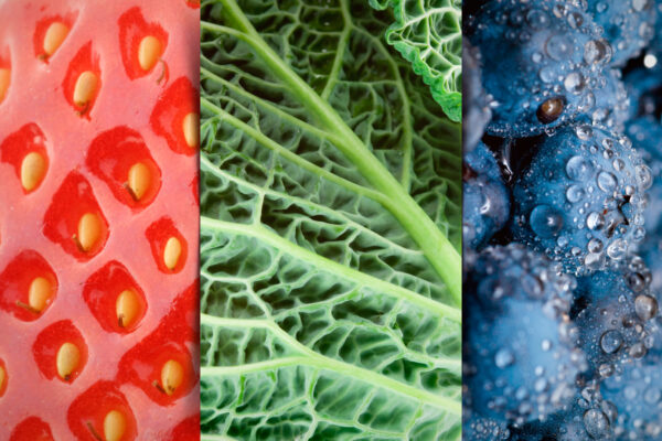 Superfoods: The Real Truth ©HoleyandMoley 2015