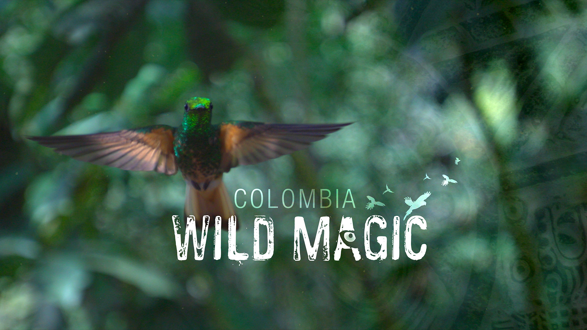 Colombia: Wild Magic ©Holey & Moley Ltd