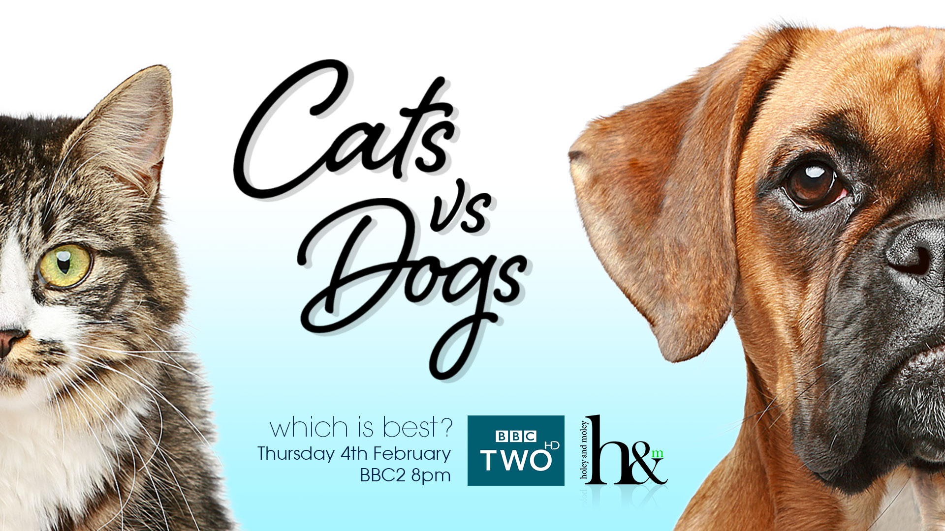 Cats vs Dogs Which is Best? ©HoleyandMoley 2016