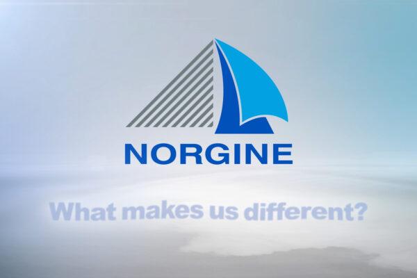 Norgine © Holey & Moley Ltd