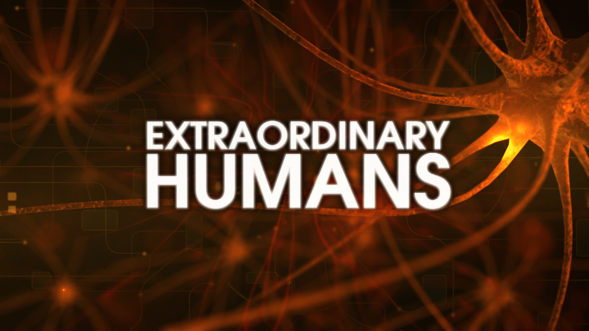 Extraordinary Humans ©Holey & Moley Ltd 2015