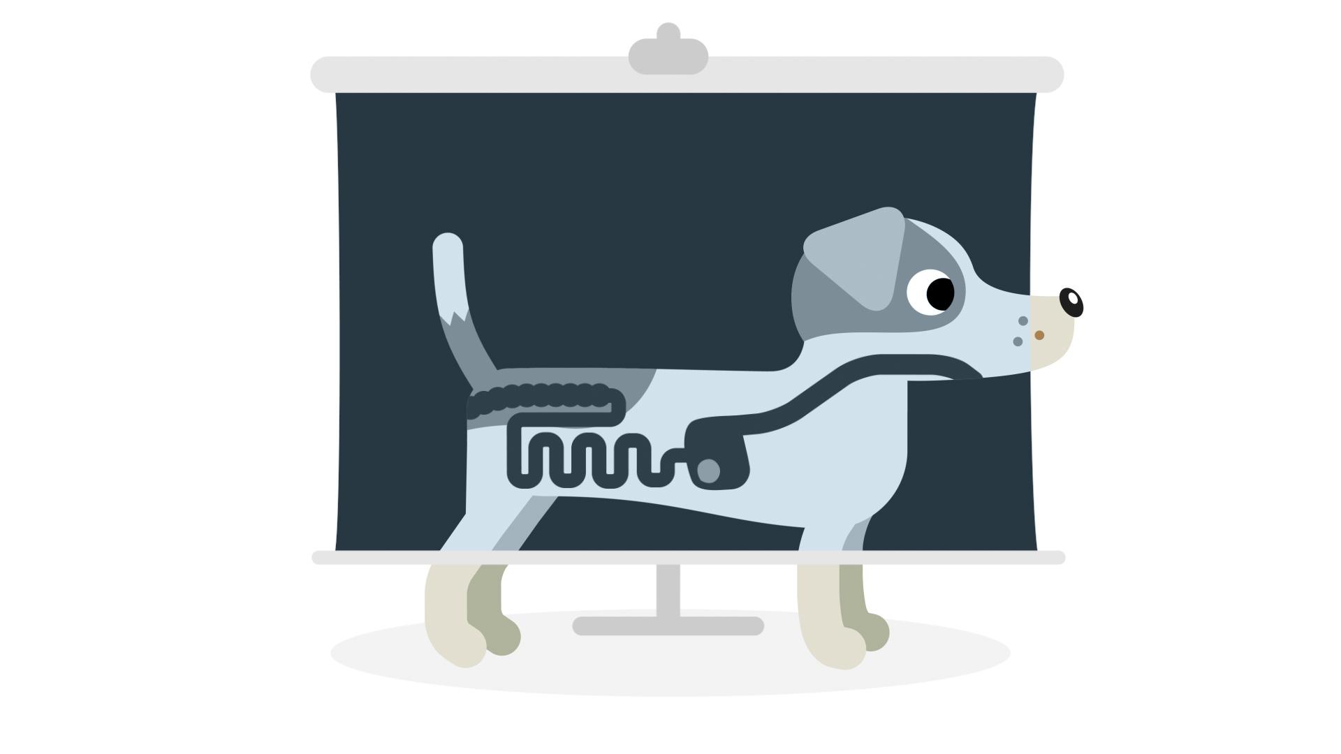 Protexin Veterinary © Holey and Moley Ltd