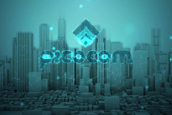 Picocom - Logo Reveal_v09_3_00104